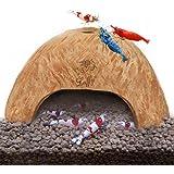 SunGrow Organic Coco Shrimp Cave : Comfortable Hideout for Shrimp : Perfect Breeding Area : Naturally Attractive & Non Toxic : Unique Aquarium Decoration
