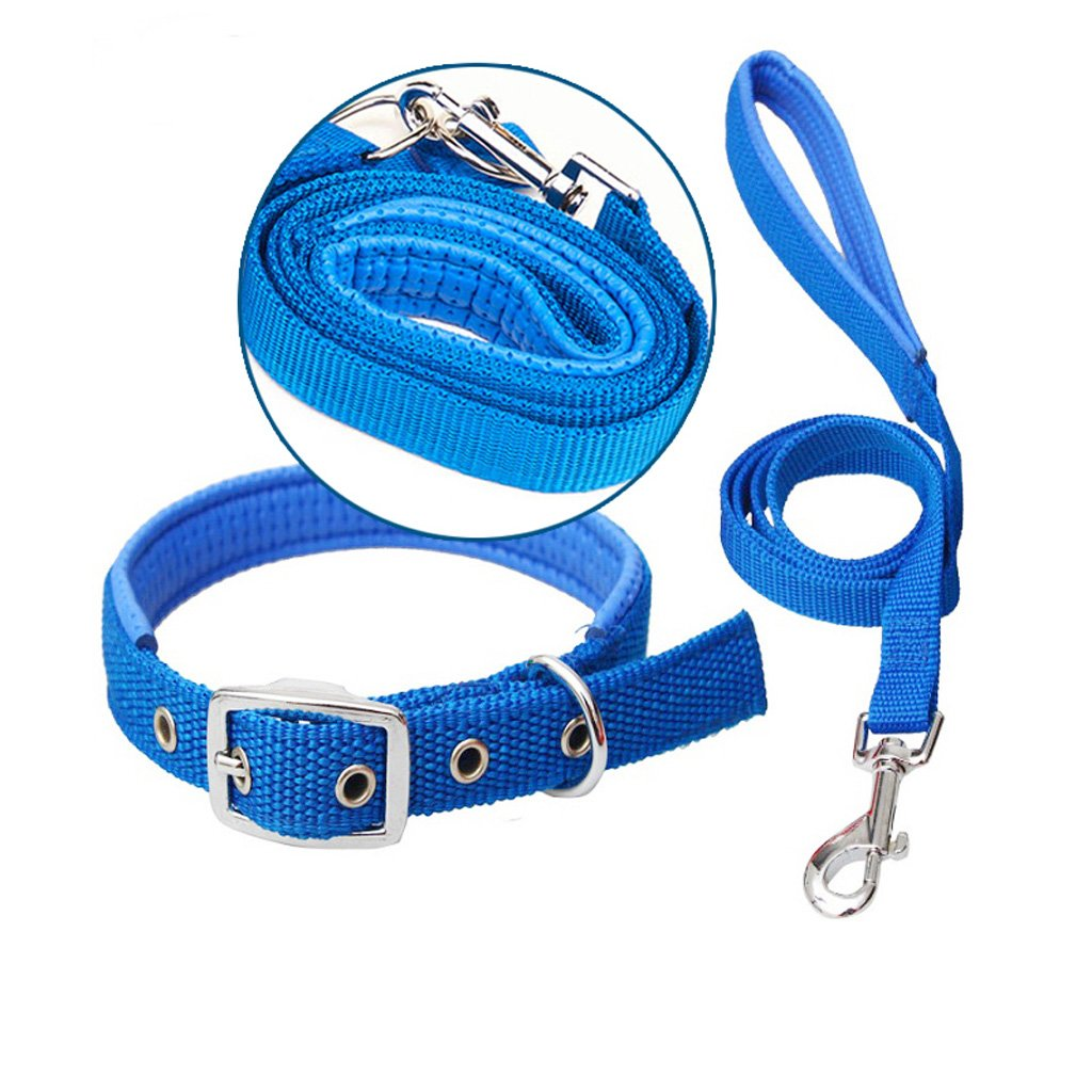bluee M bluee M Dog Lead Collar Small Medium and Large Traction Rope Chain Leash Pet (color   bluee, Size   M)