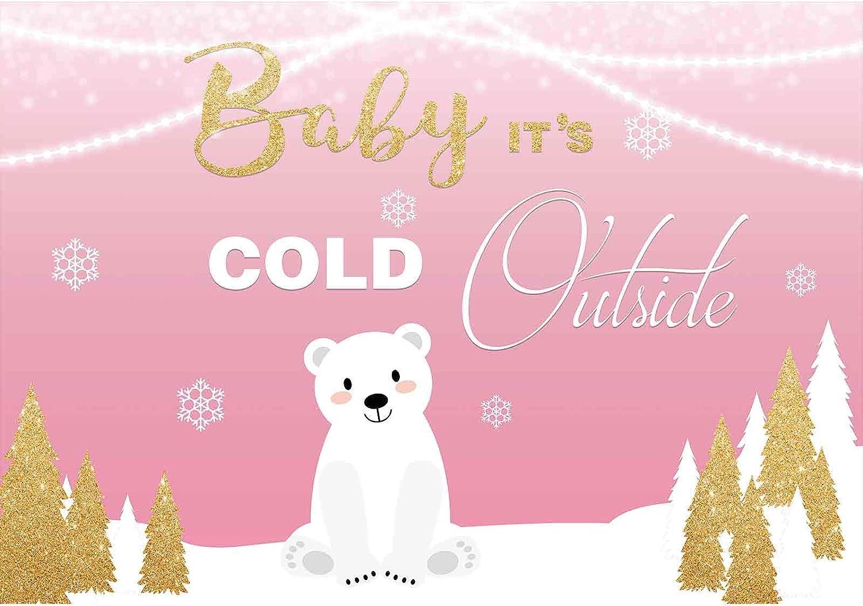 DaShan 14x10ft Christmas Winter Ice Frozen Snowflake Backdrop Winter Wonderland Birthday Frozen Baby Shower Photography Background Newborn Baby Wall Decor Christmas New Year Kids Photo Props