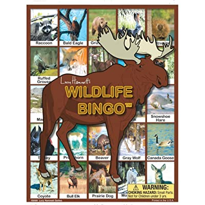 Lucy Hammett Games Wildlife Bingo Board Game: Toys & Games