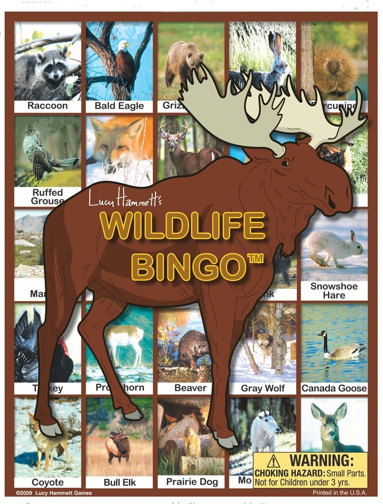 amazon com wildlife bingo board game toys u0026 games