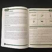 Summer Bridge Activities - Grades 7 - 8, Workbook for ...