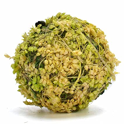 Amazon Byher Natural Preserved Moss Hanging Ball Vase Bowl Mesmerizing Decorative Balls For Bowls Green