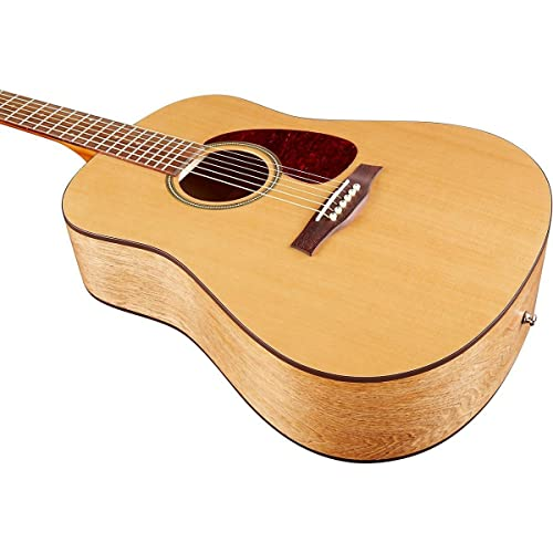 Seagull S6 Acoustic Guitar Ultimate Review