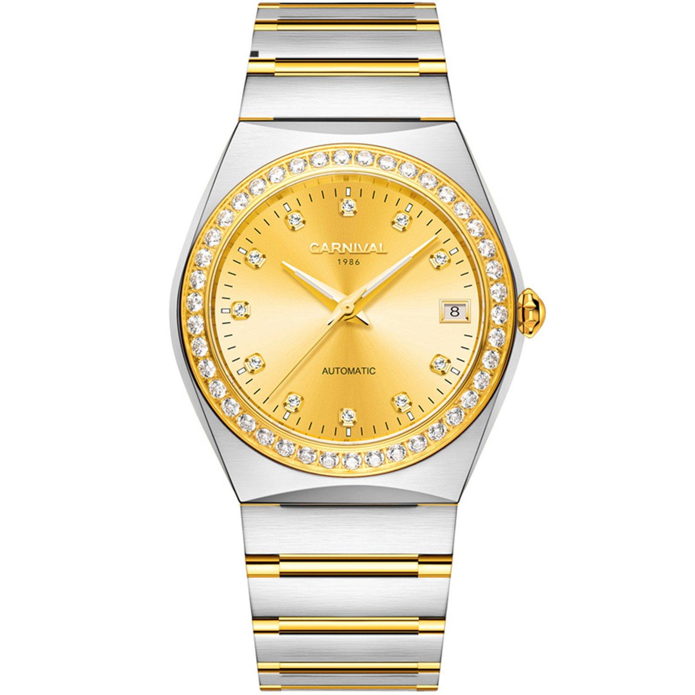 メンズダイヤモンドアクセント付きベゼルと光ダイヤル18 Kゴールドメッキ時計防水自動機械腕時計 シルバー B07DCCS7X5 シルバー シルバー