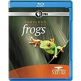 Nature: Fabulous Frogs [Blu-ray]