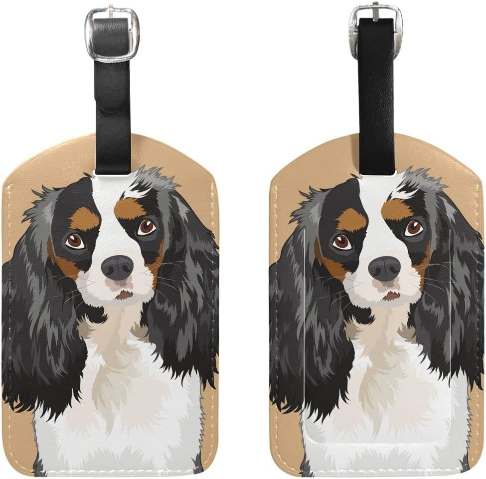 Canine Designs Set of 2 Cavalier King Charles Spaniel Luggage Tags