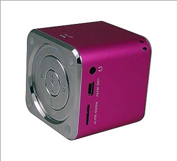 Ricco MD6 - Altavoz ultraligero para PC, portátil, Apple Mac, iPad, iPhone, etc. (USB, conector 3,5 mm, aluminio) rosa: Amazon.es: Electrónica