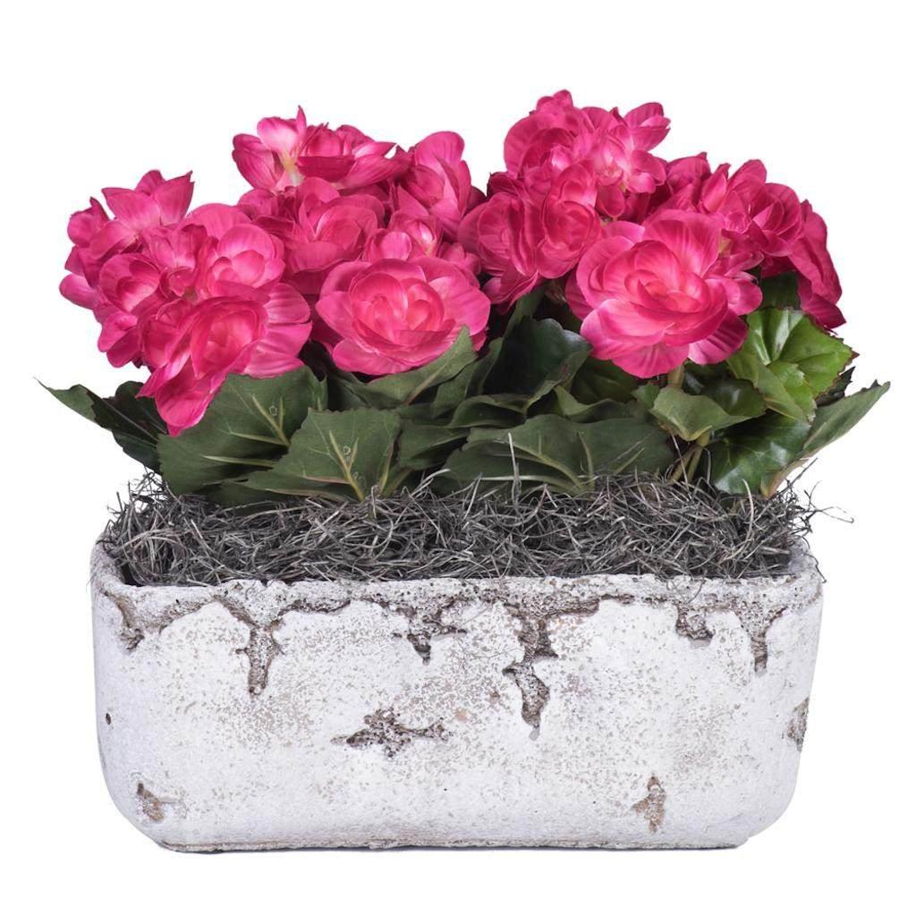 Vickerman F12224 Purple Begonia Everyday Floral
