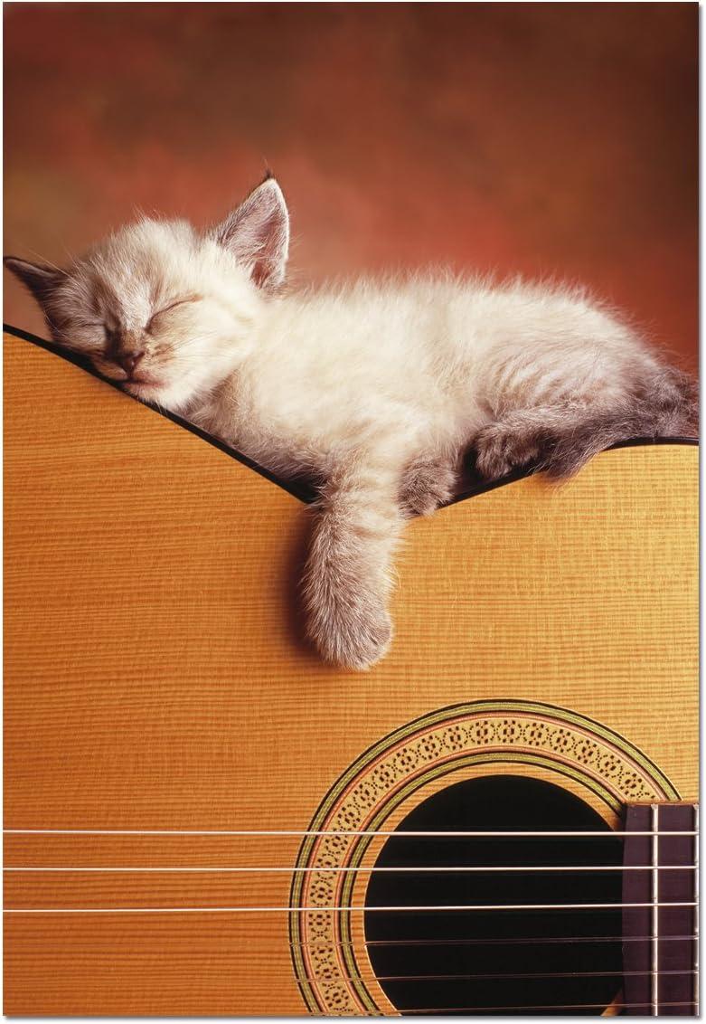 Puzzles Educa - Mi Guitarra, Puzzle de 500 Piezas (15510): Amazon ...