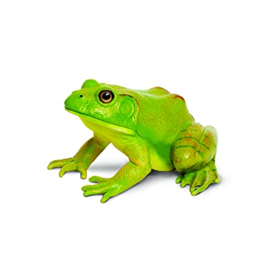 Safari Ltd Incredible Creatures American Bullfrog: Toys & Games