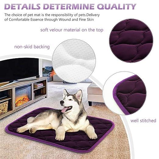 Amazon.com: SHU UFANRO Dog Bed Crate Pad Washable Mat Anti ...