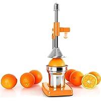 OneConcept EcoJuicer - Presse à fruits à levier mécanique pour preparation de jus de fruit frais sans courant (stable, silencieux, acier inoxydable)