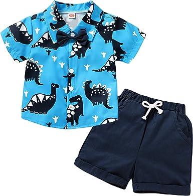 2pcs Toddler Kids Baby Boys Summer Dinosaur Tops T-shirt+Pants Shorts Outfits