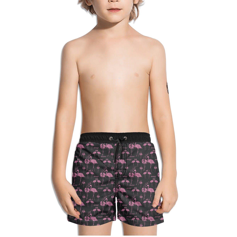 Trum Namii Boys Quick Dry Swim Trunks Pink Flamingo in Love Shorts