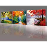 Amazon Price History for:Nuolan Art -canvas Prints, 3 panel Wall Art oil Paintings Printed Pictures Stretched for Home Decoration -P3L3040-005