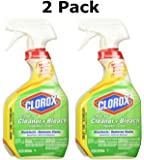 Clorox 12049 12049-2 Clean up Product, clear