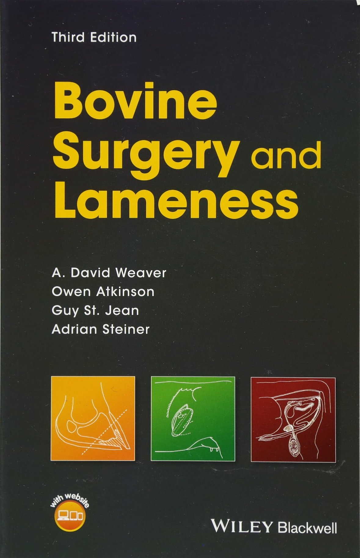 Bovine Surgery and Lameness by Wiley-Blackwell