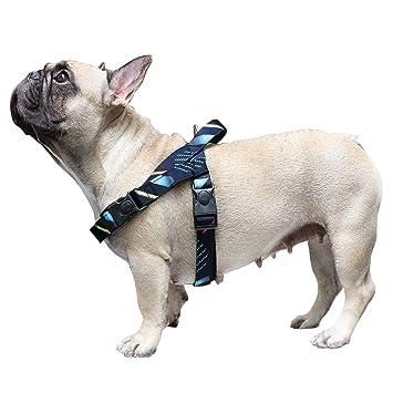iChoue Arnés para Perro, Tirar, fácil de Llevar, Ajustable, cómodo ...