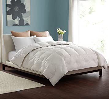 Pacific Coast Feather Lightweight Warmth Down Comforter   Queen