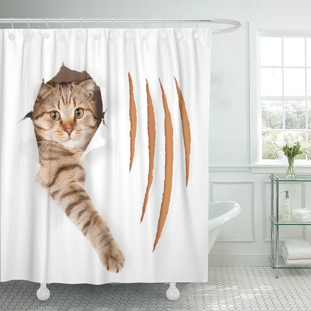 "Emvency 72""x72"" Shower Curtain Waterproof Brown Scratch Funny Cat In Torn Hole With Claw Cuts White Animal Disease Tear Big Home Decor Polyester Fabric Adjustable Hook"