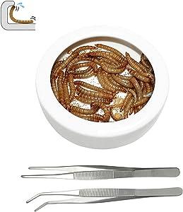 ADOGGYGO Reptile Dish Bowl Bearded Dragon Ceramic Bowl with Feeding Tongs - M