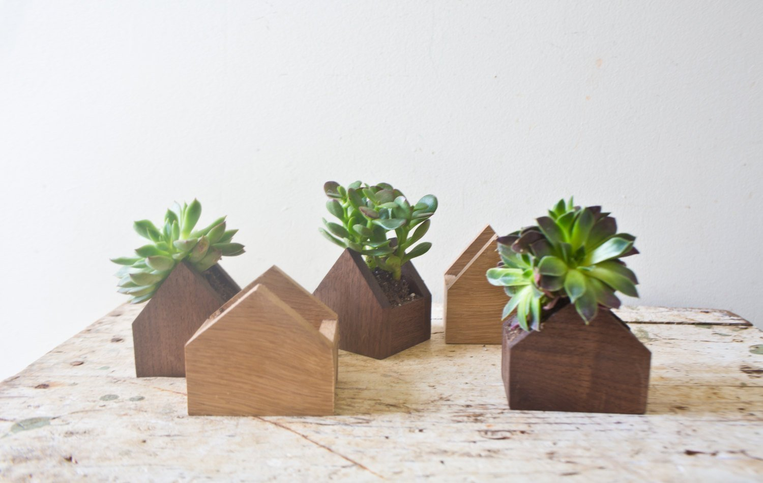 Amazon.com: Tiny House Shaped Plant Box - Walnut Natural Wood Pot ...