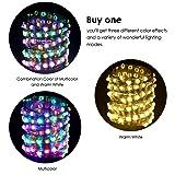 GDEALER 33Ft 100Led Fairy Lights Multi Color