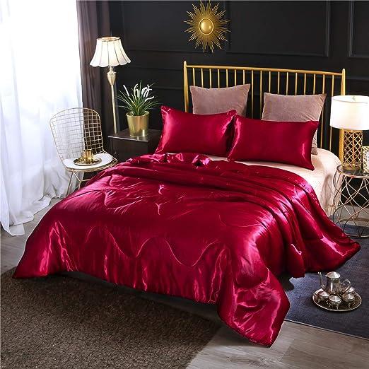 Amazon.com: NTBED Satin Silky Comforter Set Queen (90''x90