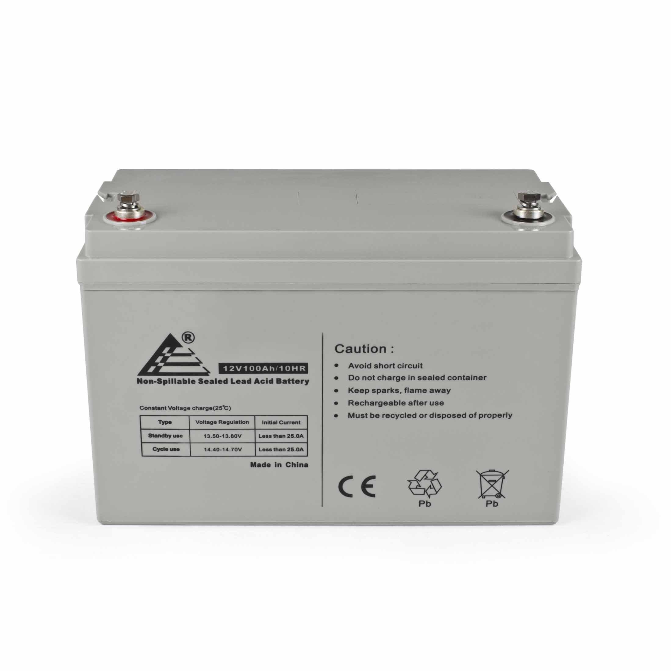 ExpertPower 12V 100Ah Solar Wind Power AGM Sealed Lead Acid Battery, 65 Pound