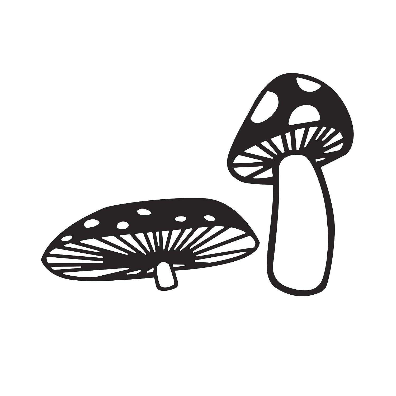 Clear 4.25 x 5.75 Darice 30032537 Embossing Folder Mushrooms