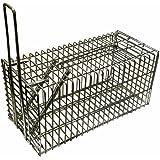 Piège à Rat & Souris Piège de capture 21 cm - Cage - Pour Animaux Avec une entrée Simple à utiliser & infaillible