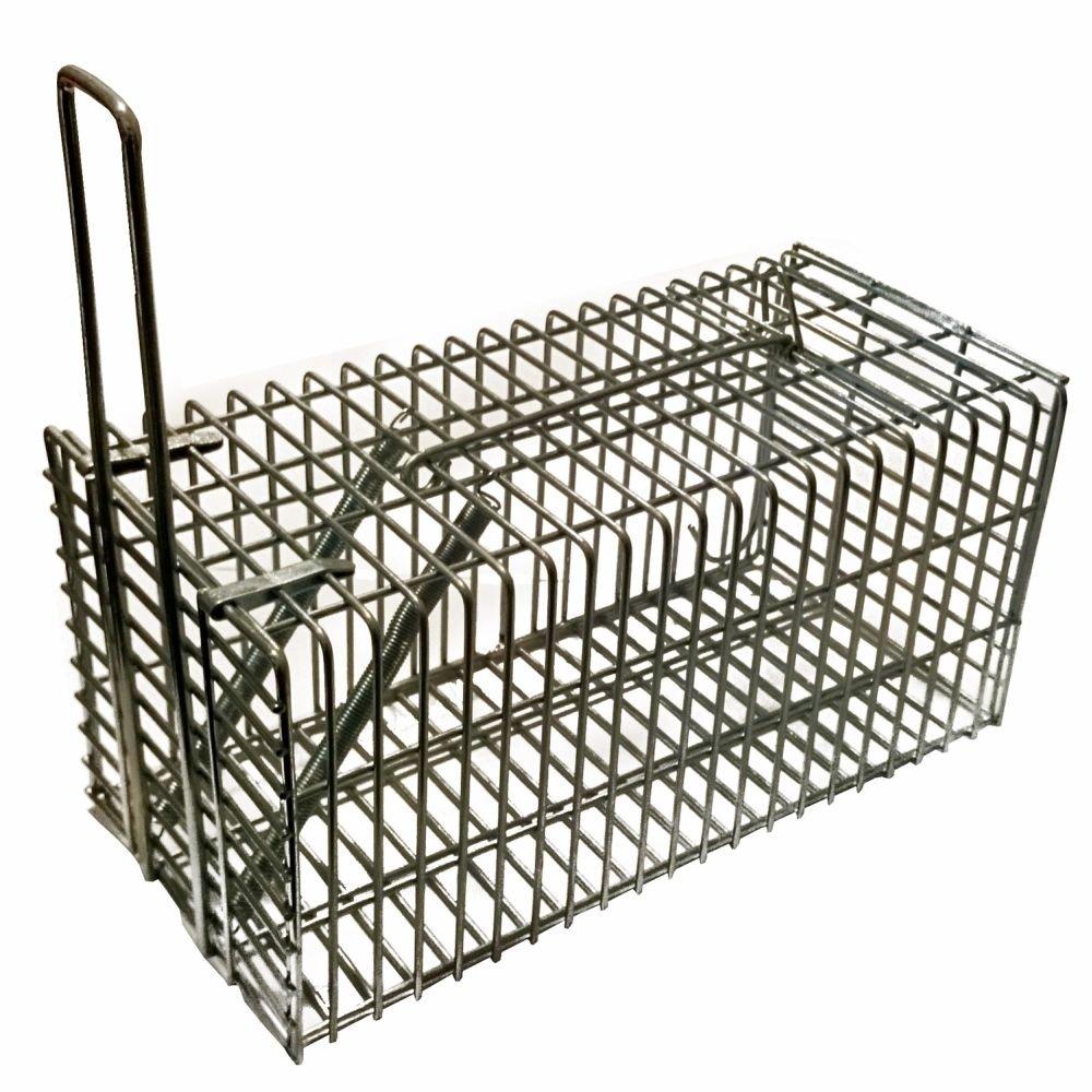 Piège à Rat & Souris Piège de capture 21 cm - Cage - Pour Animaux Avec une entrée Simple à utiliser & infaillible PROHEIM