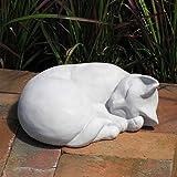 Amazoncom CAT Sleeping STATUE 11 Kitten Sculpture BURNT ORANGE