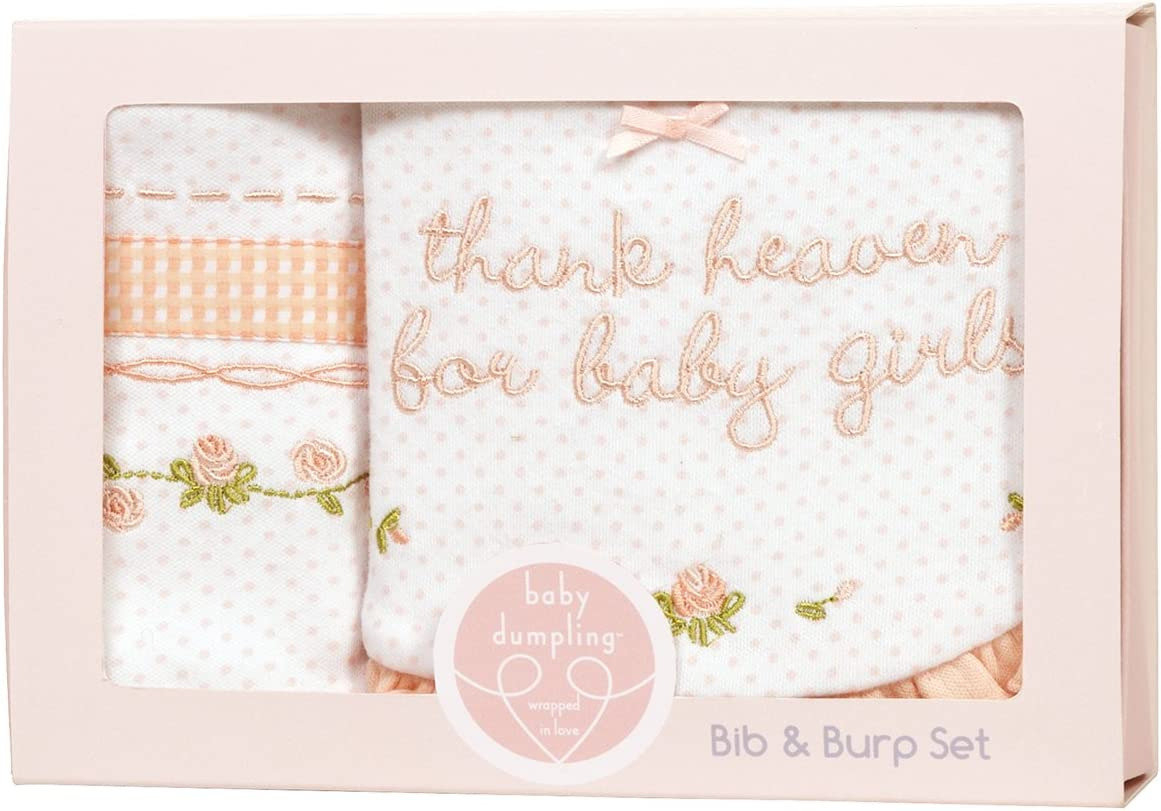Girls Baby Dumpling Heaven Sent Bib and Burp Cloth Gift Set