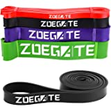 Resistance Band Loop, Zoegate Pull Up Band Exercise Workout Bands Straps for CrossFit – Powerlifting – Yoga – Stretch Mobility & Gym work Exercise Body Stretch Therapy,Distraction, Flexibility & Pullups Powerlifting (One per sale) for Men and Women
