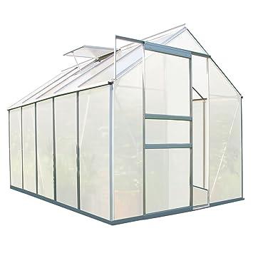 Zelsius Aluminium Gewachshaus Fur Den Garten 310 X 190 Cm 6 Mm