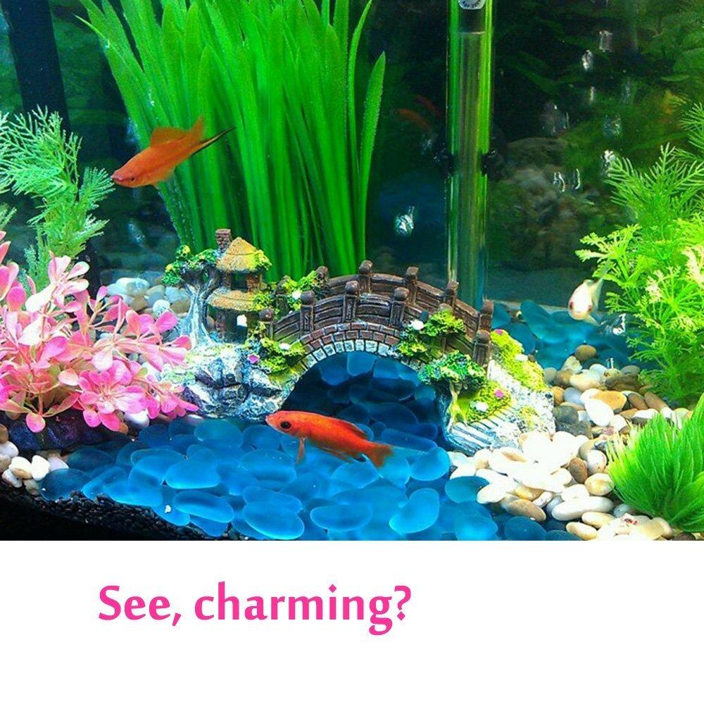 Amazon.com: Bestgle Gorgeous Fish Tank Decoration Aquarium Ornament ...