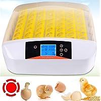 Sailnovo Incubadora automática 56 gallinas, Huevos, incubadora