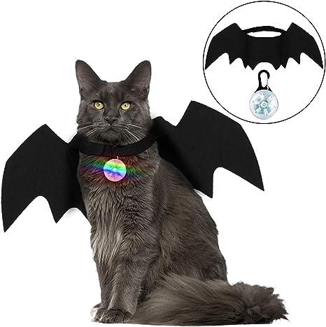 Disfraz de Gato de Halloween, murciélago de Gato con Campana de ...