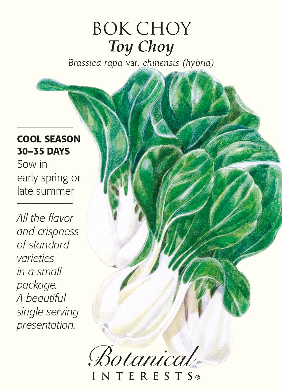 Amazoncom Toy Choy Bok Choy Seeds 200 mg Botanical