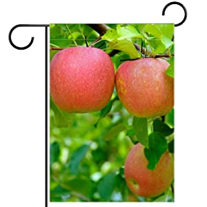 Apples Tree Garden Flag, Double Sided Garden Outdoor Yard Flags for Summer Decor 28x40 Inch