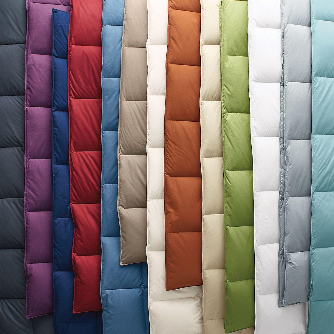 amazoncom mizone kyle 4 piece comforter set redblue fullquee