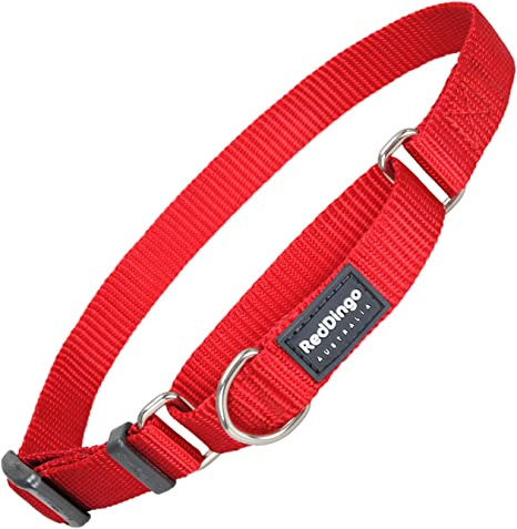 Red Dingo GmbH 9330725025363 Collar Semiahogo Perro, XL: Amazon.es ...