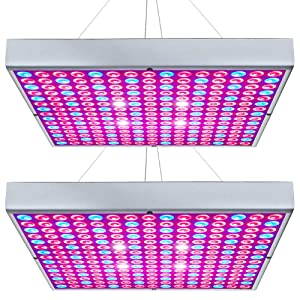 Hytekgro LED Grow Light for Indoor Plants Seedling Vegetable and Flower