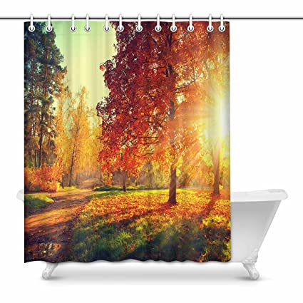 InterestPrint Autumn Fall Park Trees And Leaves In Sun Light Scene Bathroom Shower Curtain Accessories