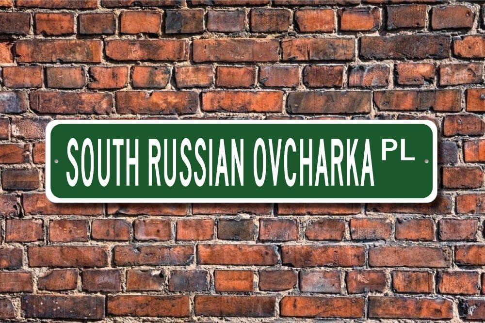 Dozili Señal de Ovcharka de Ovcharka del Sur de Rusia con Texto en inglés «South Russian Ovcharka» y «Lover Custom Street» de Calidad de Metal con Texto en inglés «Dog Owner» de 10,16 x 45,7 cm