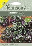 Johnsons Kalettes Mixed F1 Seed, Green/Purple, 0.3 x 9.2 x 13.2 cm