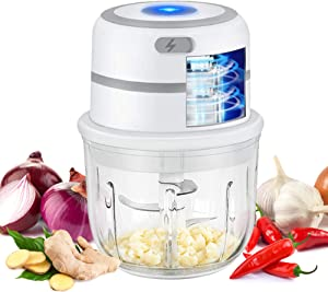 Electric Mini Food Choppers - Anbestor Small Garlic Chopper Food Processor, Mincer Slicer Cutter For Vegetable Onion Ginger Meat Salad Nut with Glass Bowl, 1.2 Cup