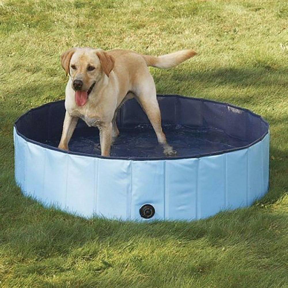 Cheapest Dog Pool: PYRUS Dog Pool